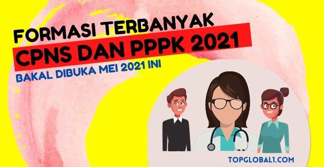 Formasi Terbanyak CPNS Dan PPPK 2021