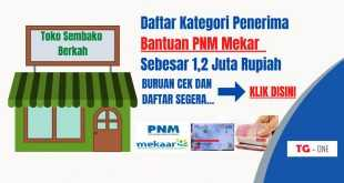 Daftar Kategori Penerima Bantuan PNM Mekaar