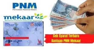 Cek Syarat Terbaru Bantuan PNM Mekaar